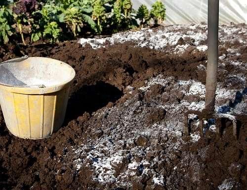 почва под картофель